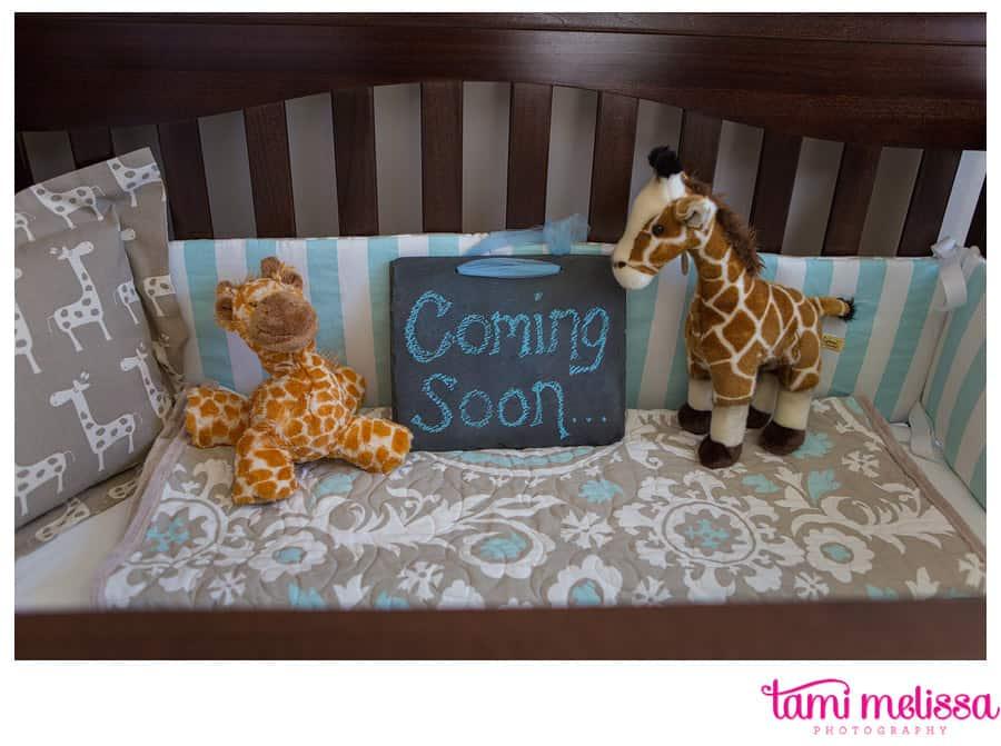 Carly_Kevin_Medford_Lakes_Maternity-0002