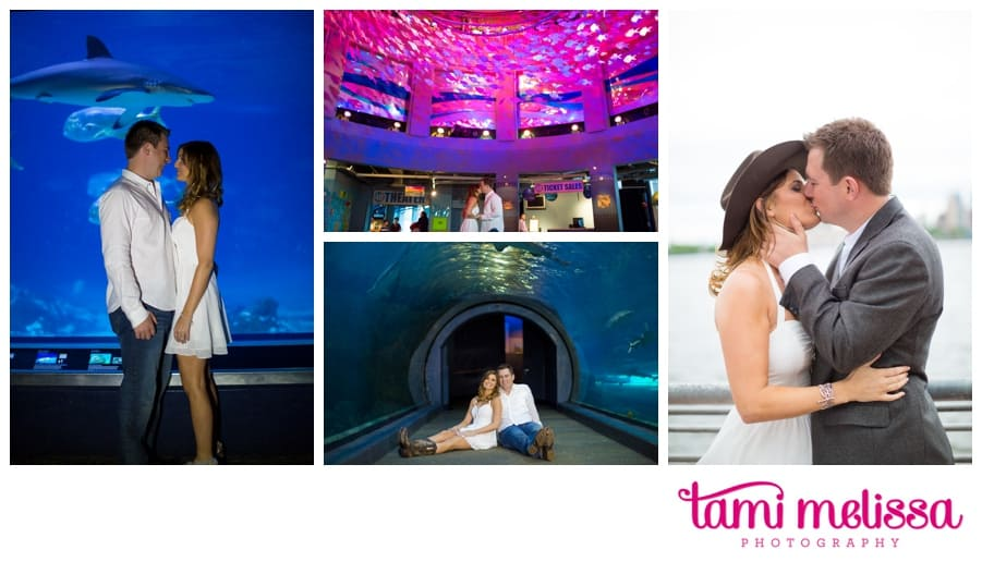Michelle_Eric_Adventure_Aquarium_Engagement-0004