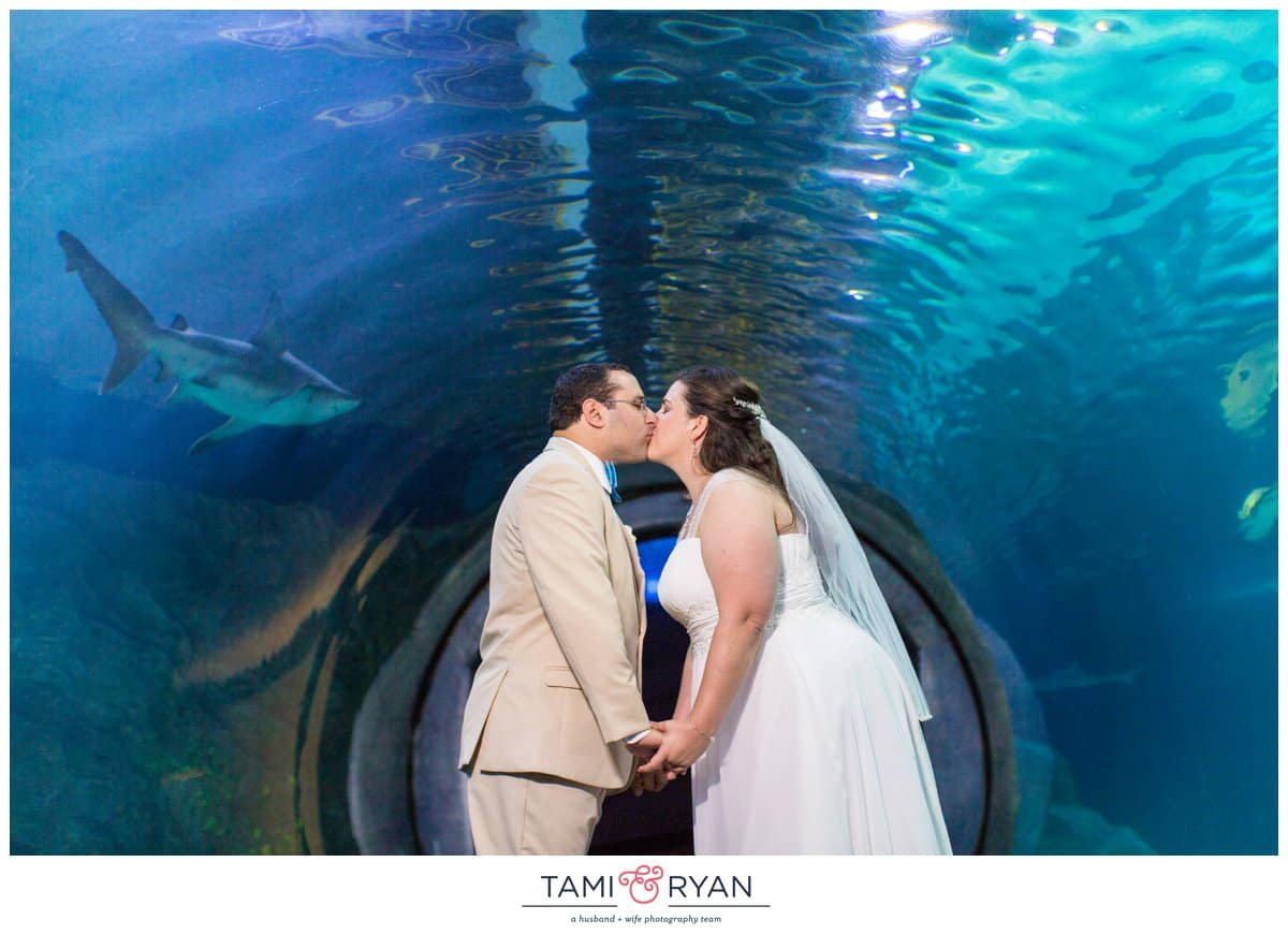 Bridget-Matt-Camden-Adventure-Aquarium-Philadelphia-Wedding-Photographer-0028