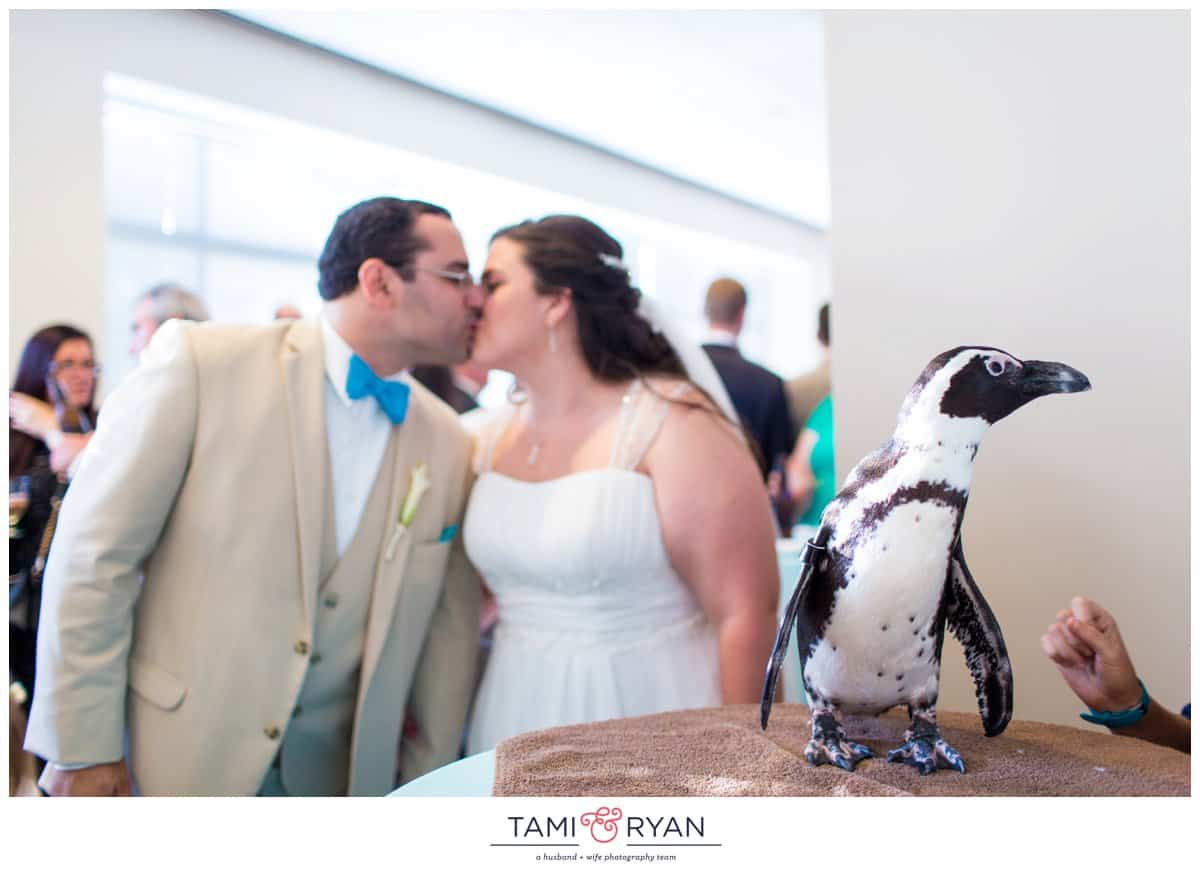 Bridget-Matt-Camden-Adventure-Aquarium-Philadelphia-Wedding-Photographer-0040