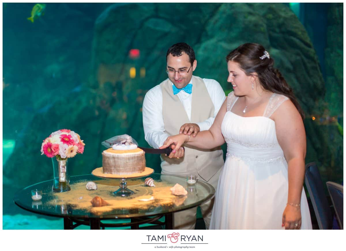 Bridget-Matt-Camden-Adventure-Aquarium-Philadelphia-Wedding-Photographer-0046