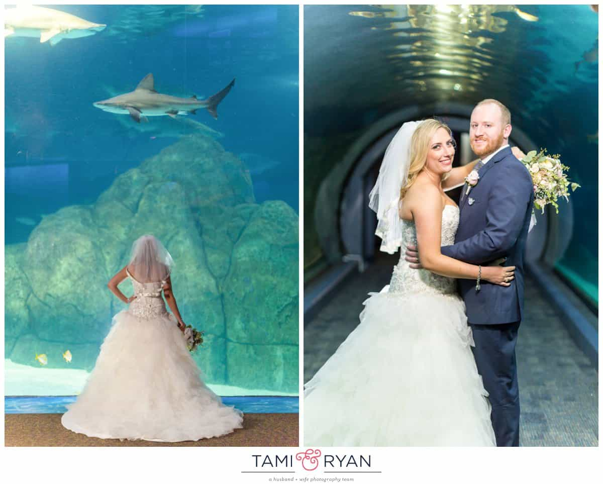 Flowers by Gina Archives | Tami & Ryan