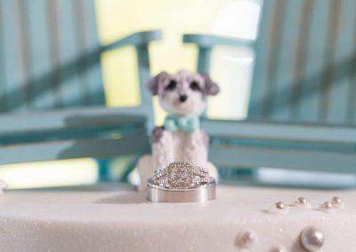 Alison-Jim-Atlantic-City-Country-Club-Brigantine-Wedding-Photographer-0150