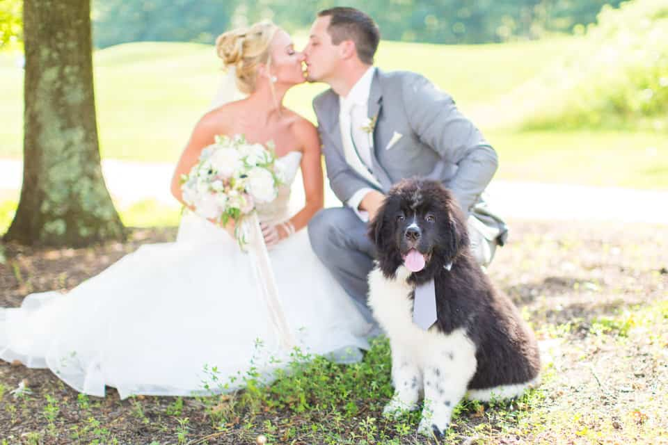 Amy-Sean-Running-Deer-Golf-Club-Wedding-Photography-0071