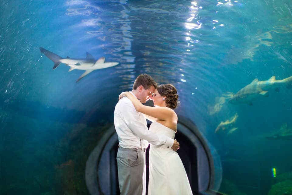 Renee-Clint-Currents-Ballroom-Adventure-Aquarium-Philadelphia-New-Jersey-Destination-Wedding-Photography-0051