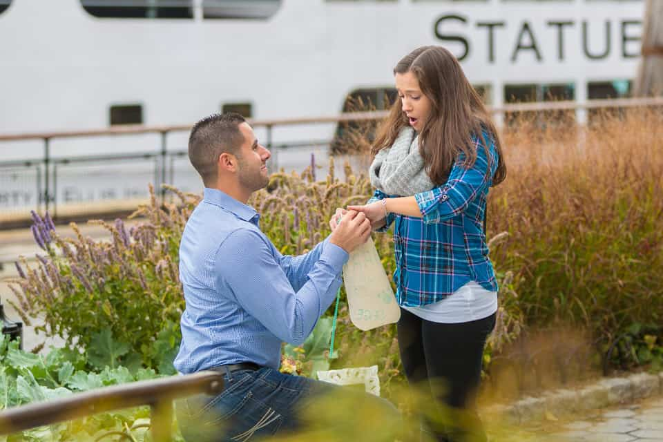 Surprise Proposal at Battery Park New York City