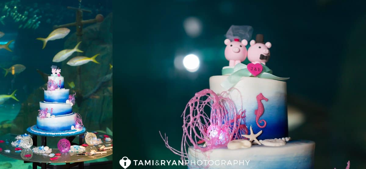 wedding cake aquarium pigs