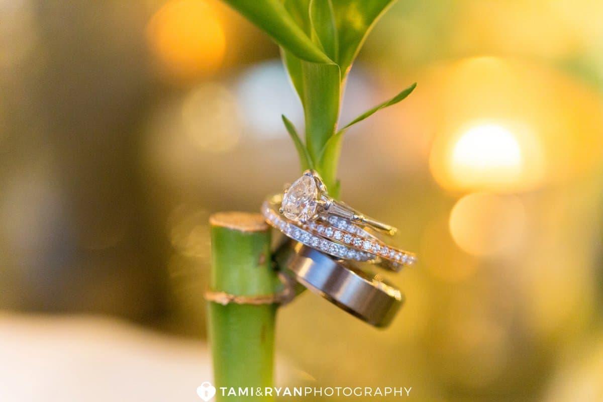 wedding rings bamboo