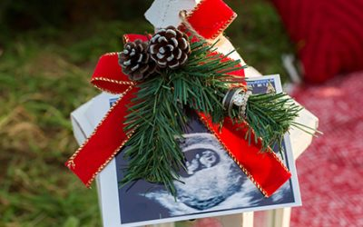 Pregnancy Announcement at Stimpson Tree Farm