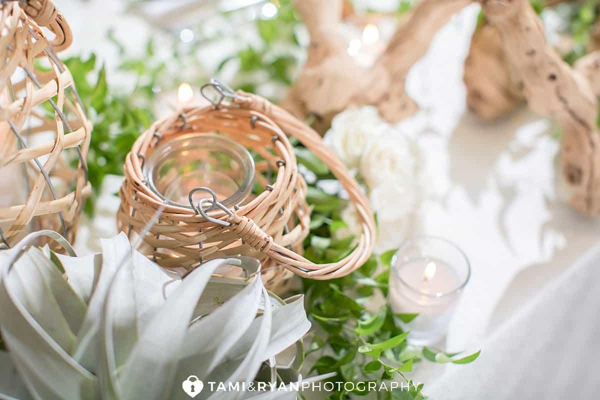 the reeds shelter haven wedding details