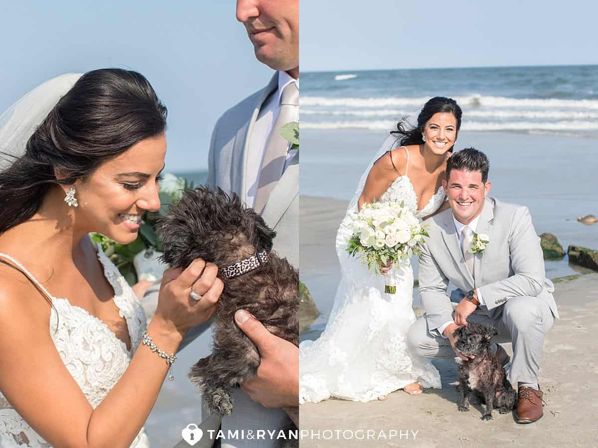 bride groom dog fur baby